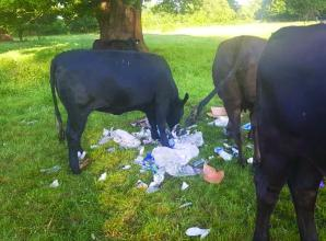 Public urged to 'act responsibly' after bad parking and litter at South Bucks parks