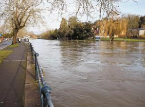 River Thames plagued with 'high quantities' of microplastics