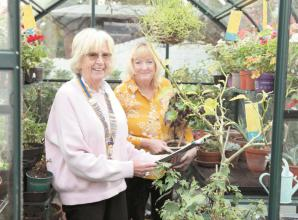 Gardens sought for Maidenhead charity open garden weekend