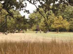 Petition calling for Maidenhead Great Park closing next week